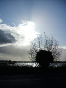 The nearby Somerset Levels